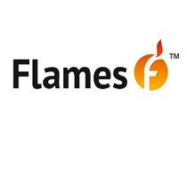 Пиролизные котлы Flames